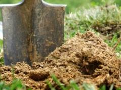 soil organism shovel